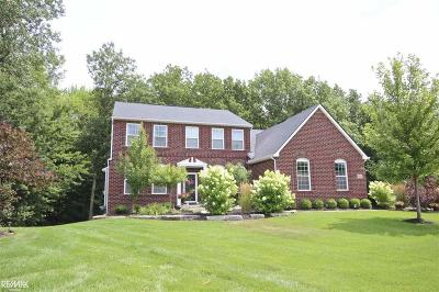 Oakland Twp Single Family Home For Sale: 903 Wynstone Cir