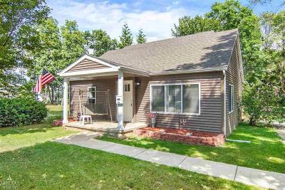 Romeo Vlg, Bruce Twp, Washington Twp Single Family Home For Sale: 234 Harriet Street