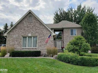 Macomb Twp Single Family Home For Sale: 54651 Congaree