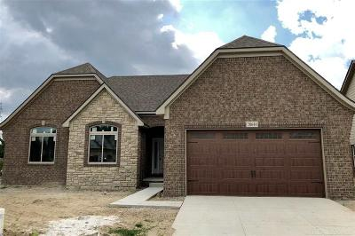 Macomb Twp Single Family Home For Sale: 20644 Misty Brook Ct.