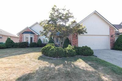 Macomb Twp Single Family Home For Sale: 47943 Daisy