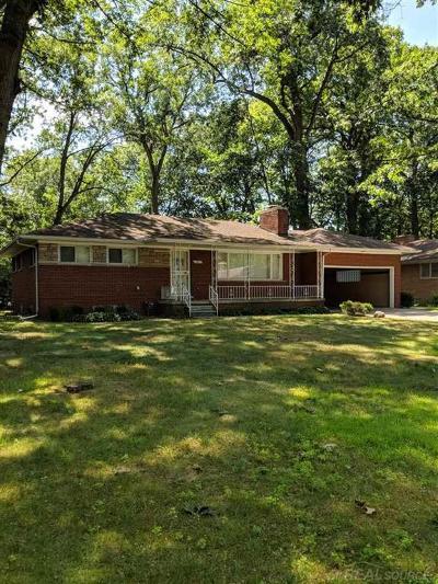 Southfield Single Family Home For Sale: 19011 Nadol
