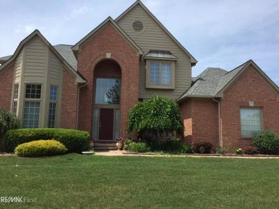 Auburn Hills Single Family Home For Sale: 3437 Oxford