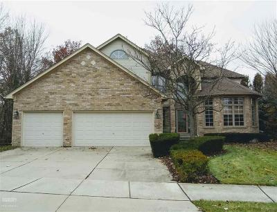 Macomb Twp Single Family Home For Sale: 48899 Chelsea Park Dr.