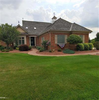 Washington Twp Single Family Home For Sale: 58520 Cory Lake