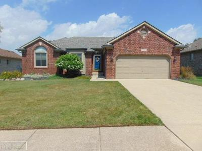 Macomb County Single Family Home For Sale: 34169 Summerhill
