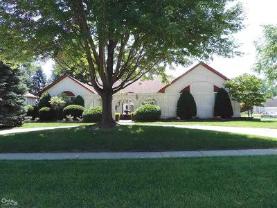 Macomb County Single Family Home For Sale: 11696 Ridge