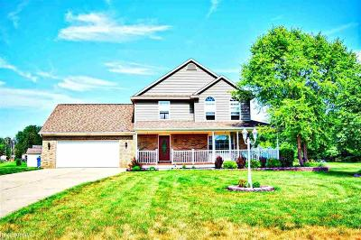 Single Family Home For Sale: 10319 Pine Valley