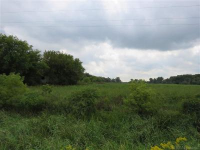 Residential Lots & Land For Sale: 7680 Newark