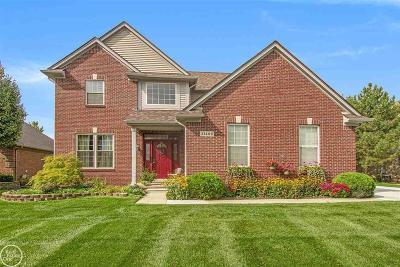 Macomb Twp Single Family Home For Sale: 21406 Carlton