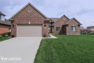 Macomb Twp Single Family Home For Sale: 21847 Tesner