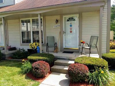 Sterling Heights Condo/Townhouse For Sale: 35203 Taffy Dr #Unit 86
