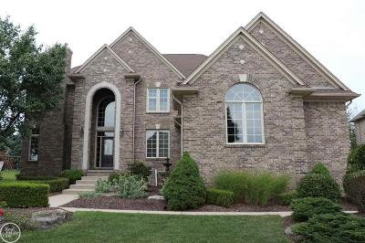 Rochester Hills Single Family Home For Sale: 702 Panorama
