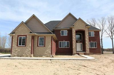 New Boston, Huron Twp Single Family Home For Sale: 24059 Foxhollow #29