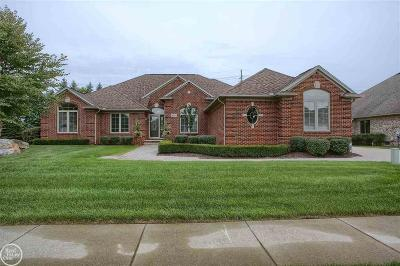 Shelby Twp Single Family Home For Sale: 14209 Hibiscus Drive