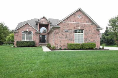 Shelby Twp Single Family Home For Sale: 54485 White Spruce Ln