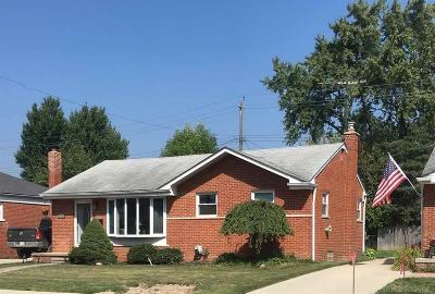 Macomb County Single Family Home For Sale: 21731 Visnaw