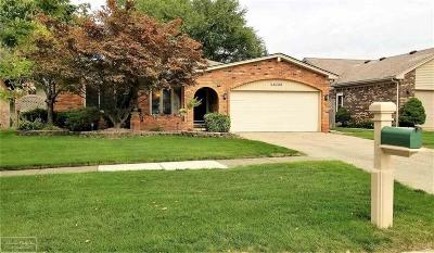 Macomb Twp Single Family Home For Sale: 16729 White Plains Dr