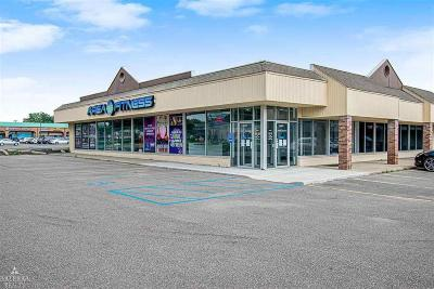 Oakland County Commercial Lease For Lease: 3536 Rochester