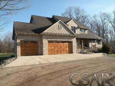 Clinton County Single Family Home For Sale: 6341 Clise