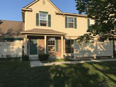 Holly Twp, Holly Vlg, Holly Condo/Townhouse For Sale: 4006 Stonebridge