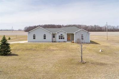Isabella County Single Family Home For Sale: 4420 S Loomis Road