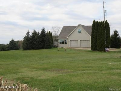 Hillsdale County Single Family Home For Sale: 2360 S Allen Rd