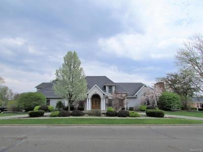 Branch County Single Family Home For Sale: 70 Western Ave
