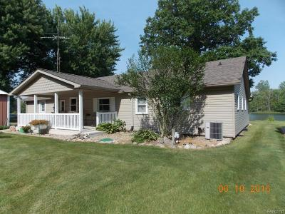 Branch County Single Family Home For Sale: 873 Dragon Shores Dr