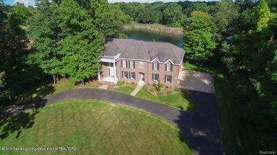 Clinton County Single Family Home For Sale: 16699 Peacock Lane