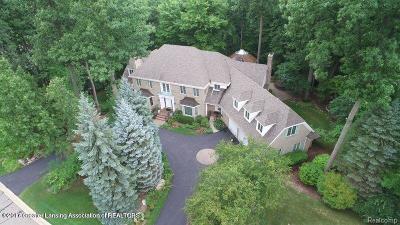 Clinton County Single Family Home For Sale: 6231 Heathfield Drive