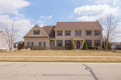 Clinton County Single Family Home For Sale: 12705 Warm Creek Drive