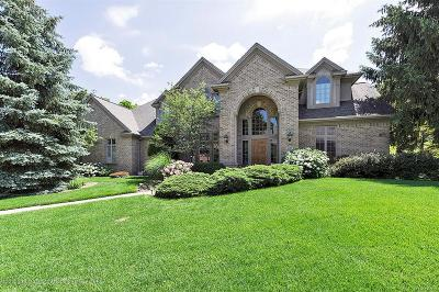 Meridian Charter Twp Single Family Home For Sale: 6422 Oakencliffe Lane