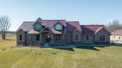 Clinton County Single Family Home For Sale: 10272 S Wacousta Road