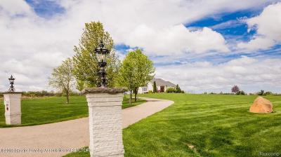 Clinton County Single Family Home For Sale: 9364 Lookout Circle