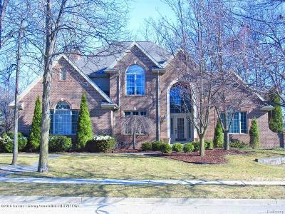 Meridian Charter Twp Single Family Home For Sale: 2032 Birch Bluff Drive