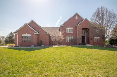 Clinton County Single Family Home For Sale: 13600 Forest Hill Road