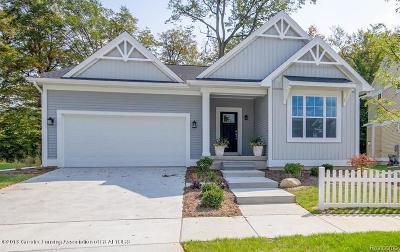 Lansing Single Family Home For Sale: 3843 Fossum Lane