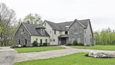 Clinton County Single Family Home For Sale: 7940 E Cutler Road