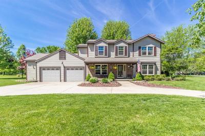 Dewitt Single Family Home For Sale: 1325 W Geneva Drive