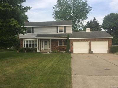 Manistee County Single Family Home For Sale: 1579 Ivy Lane