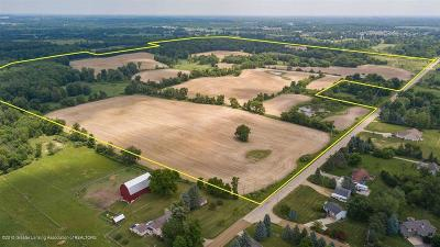 Clinton County Residential Lots & Land For Sale: V/L Stoll
