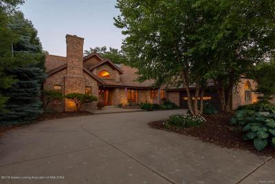 Meridian Charter Twp Single Family Home For Sale: 6310 Island Lake Drive