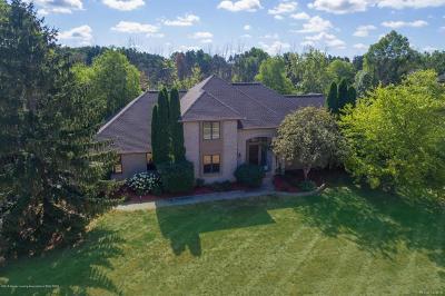 Meridian Charter Twp Single Family Home For Sale: 6420 E Island Lake Drive