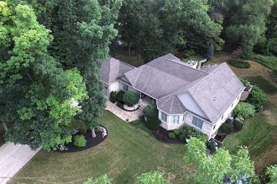 Clinton County Single Family Home For Sale: 15067 Seniors Court