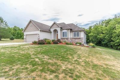 Lansing Single Family Home For Sale: 2925 Pinto Circle