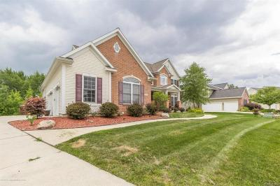 Meridian Charter Twp Single Family Home For Sale: 2681 Loon Lane