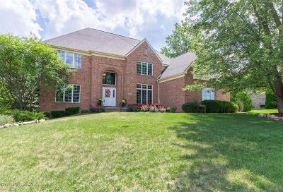 Meridian Charter Twp Single Family Home For Sale: 6201 Windrush Lane