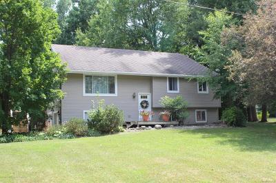 Dewitt Single Family Home For Sale: 1201 Alpine Drive