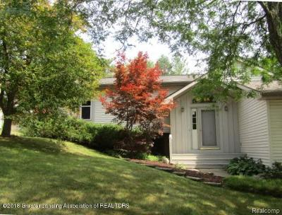 Dewitt Single Family Home For Sale: 1309 Redpole Drive